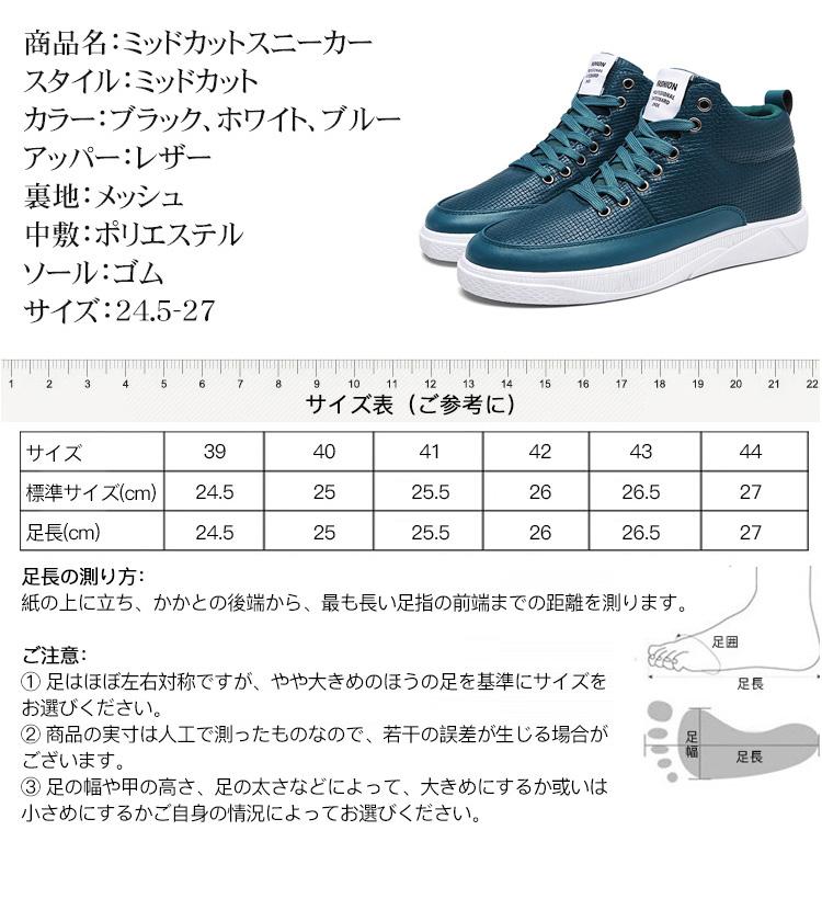 index_19.jpg
